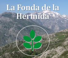 FONDA-DE-LA-HERMIDA
