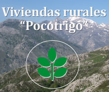 rural-pocotrigo