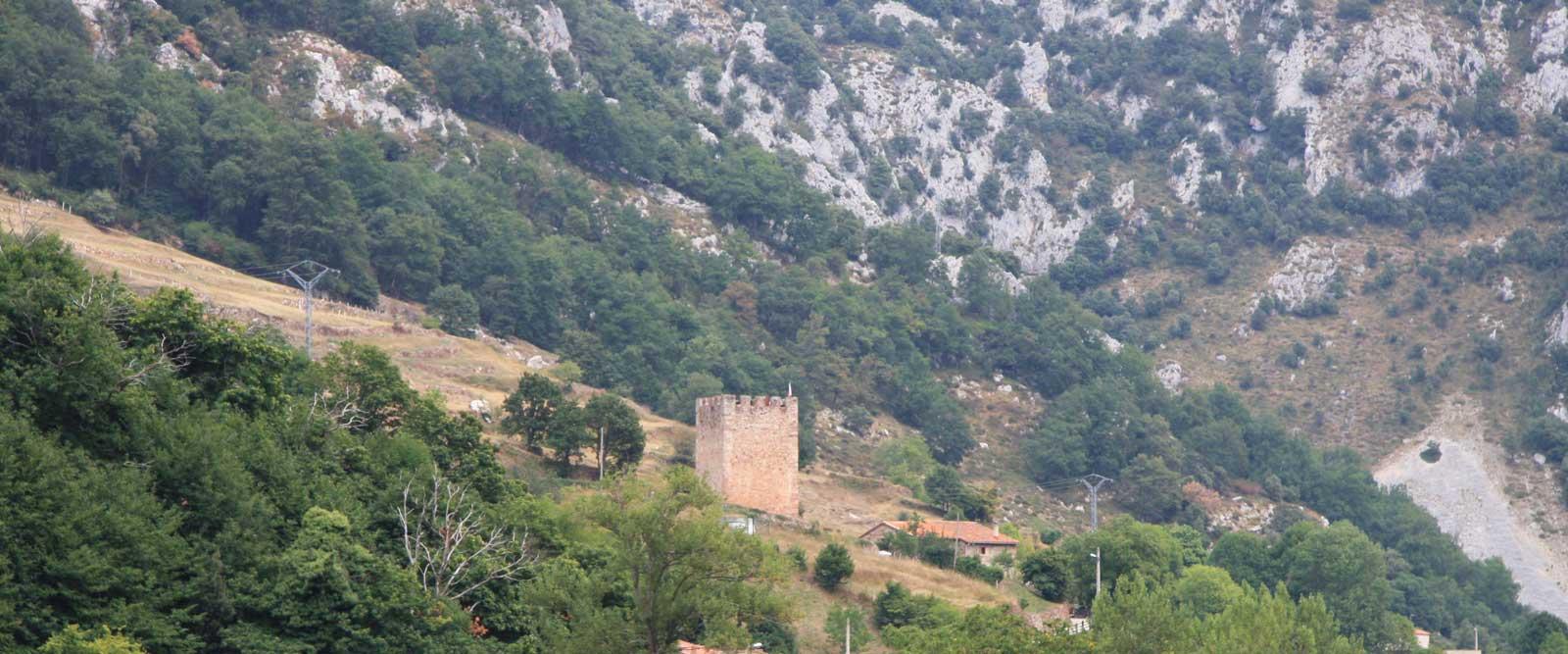 patrimonio-penarrubia-torre-f